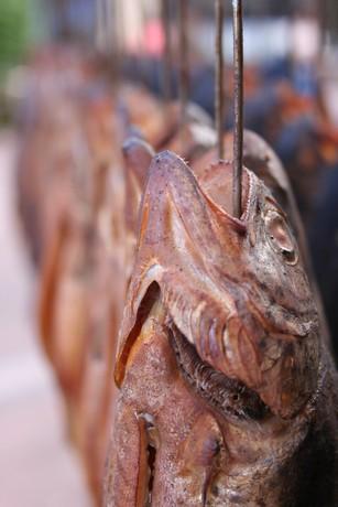 Produit de la pêche