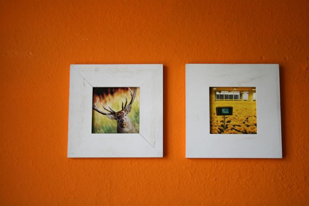 Progressives orange in WG-Küchen macht was her oder?