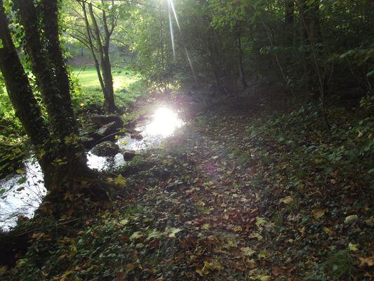 Promenade au bord de la moine