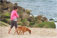 Promenade de chien en plage