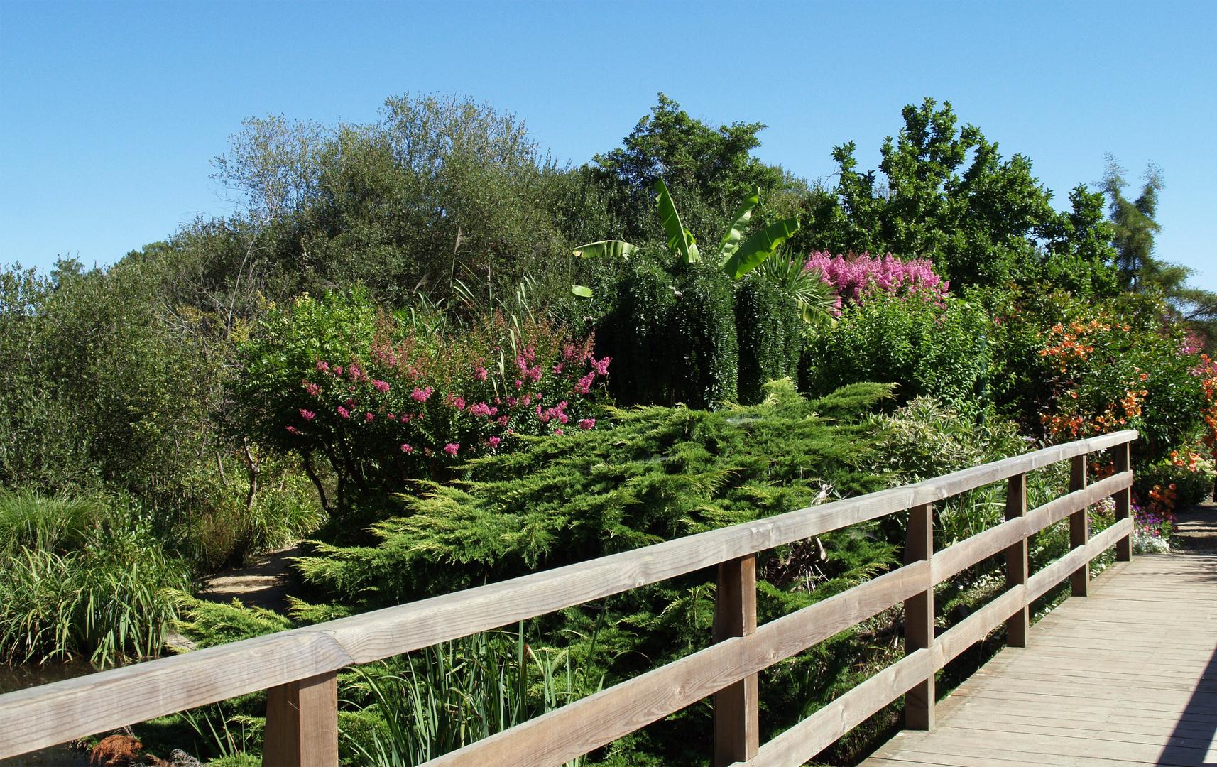 promenade fleurie – mimizan 1 photo et image | jardins, landes