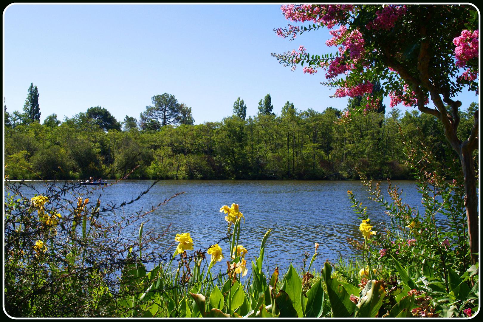 promenade fleurie – mimizan 6 photo et image | jardins, landes