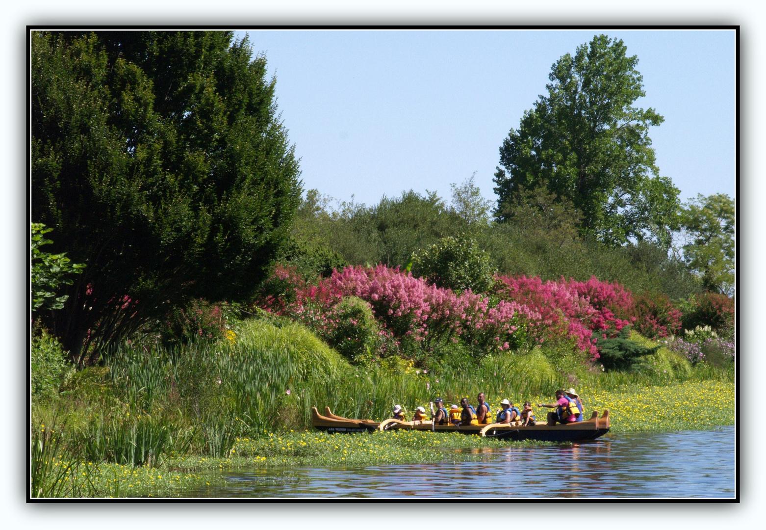 promenade fleurie – mimizan 9 photo et image | paysages, lacs
