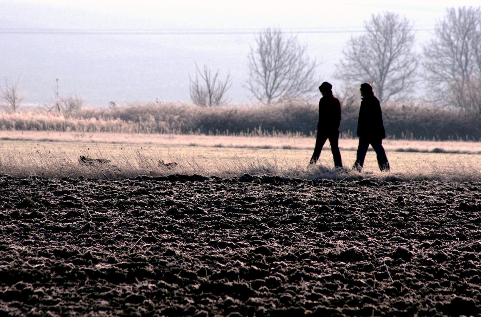 Promenade givrante