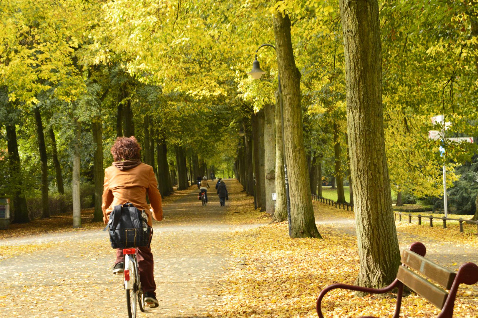 Promenade im Herbst