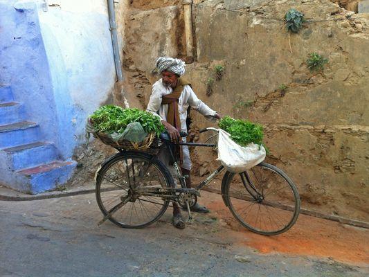propelled herb dealer