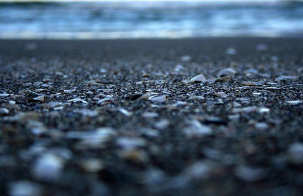 prora ....am strand von rügen