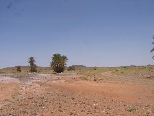 Province de Errachidia