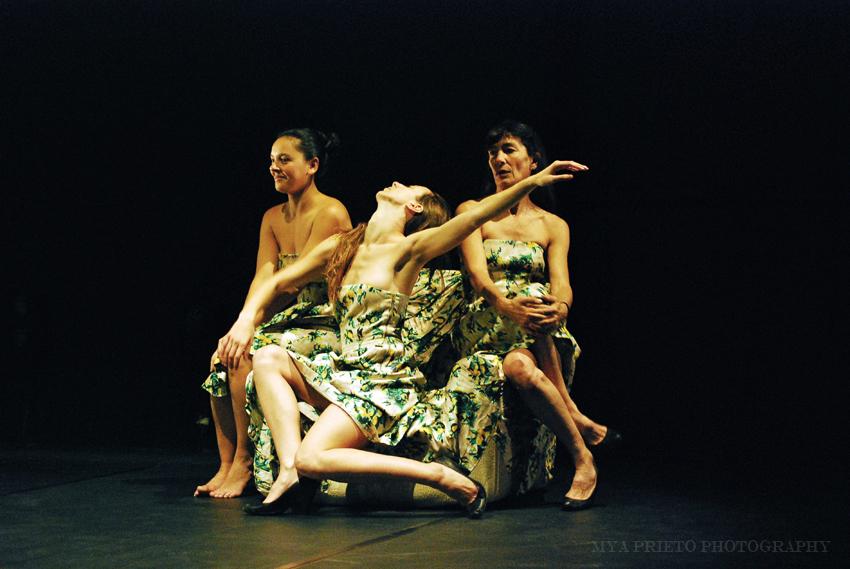 Provisional Danza