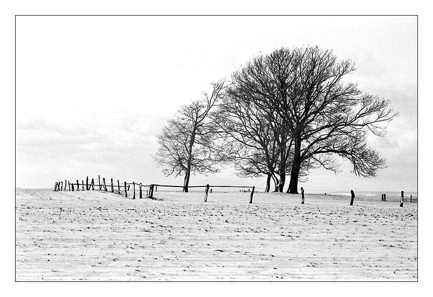 Pseudo-Winter..