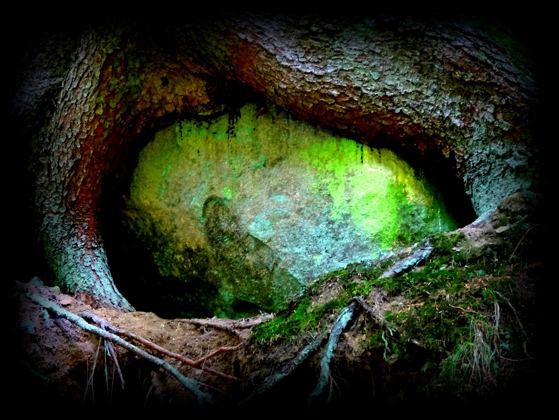 Psst! Baum gebiert Stein!