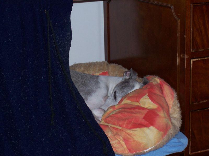 Psst - die Prinzessin schläft !