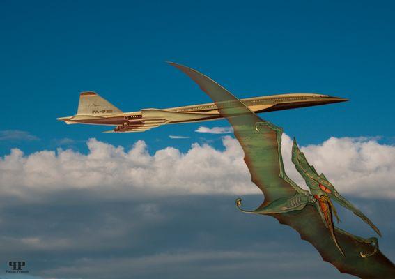 Pteranoide