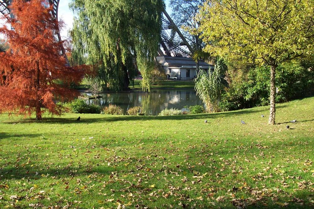 pêtit jardin d'automne