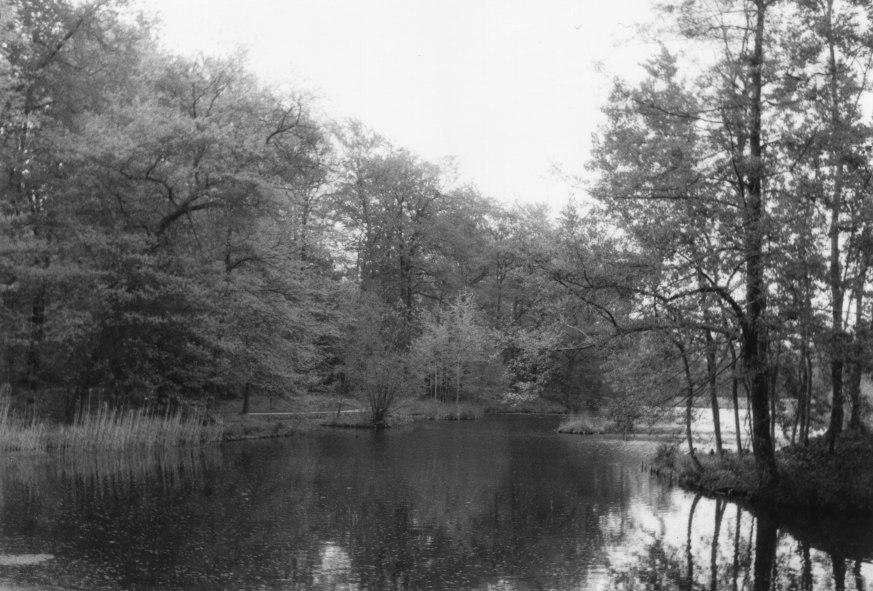 Pückler-Park in Cottbus