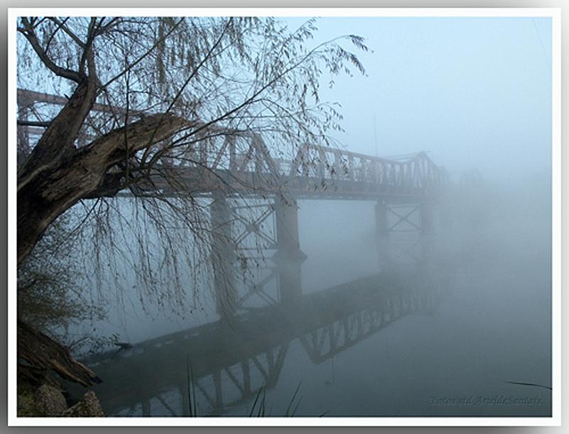 puente a la niebla