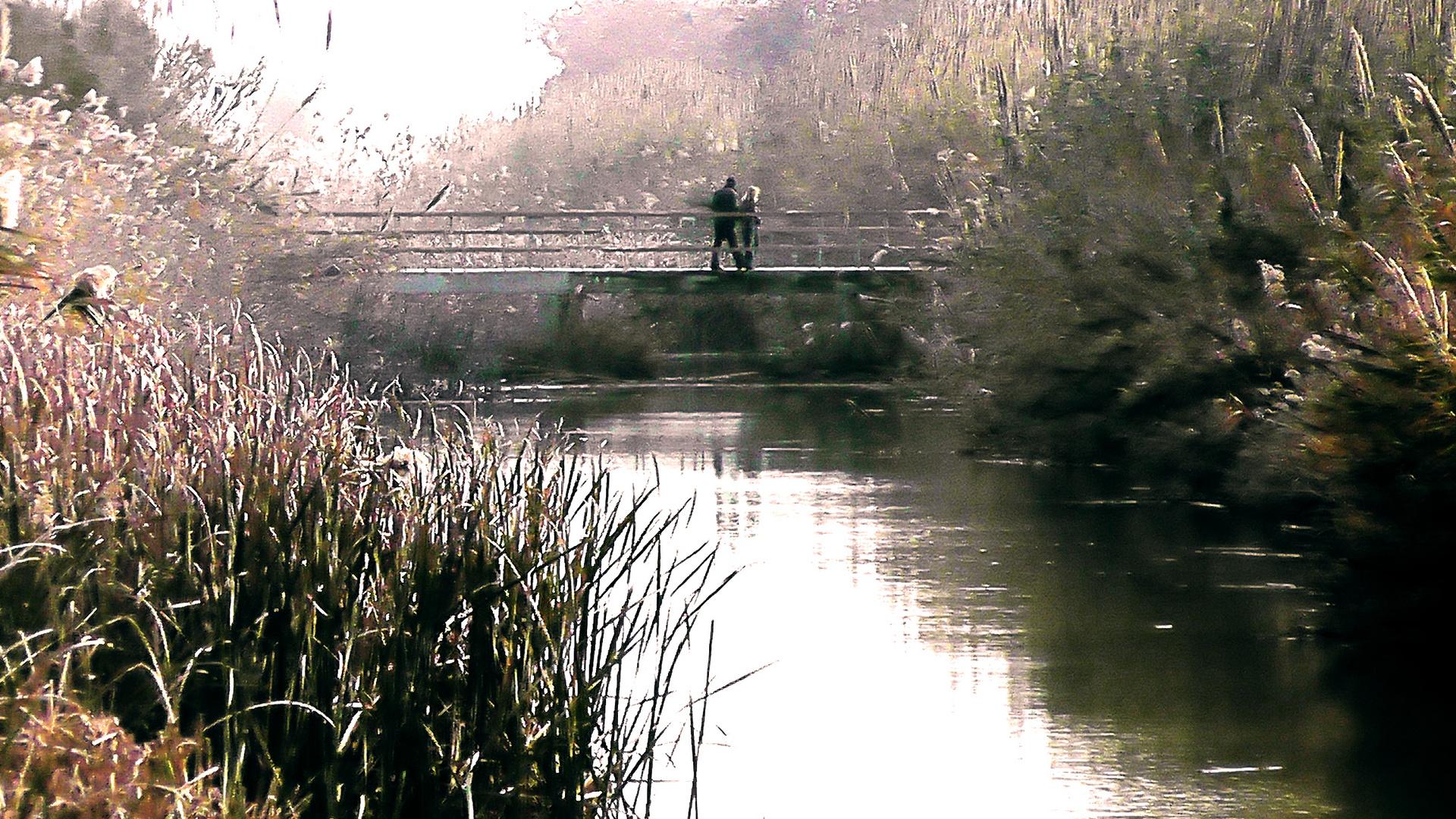 Puente colgante:)
