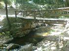 puente de madera en gualba