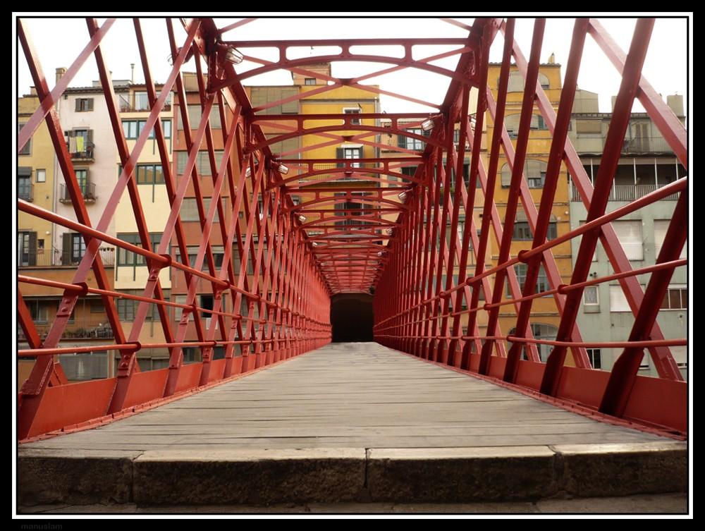 Puente-Jaula