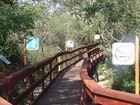 puente sobre la isla