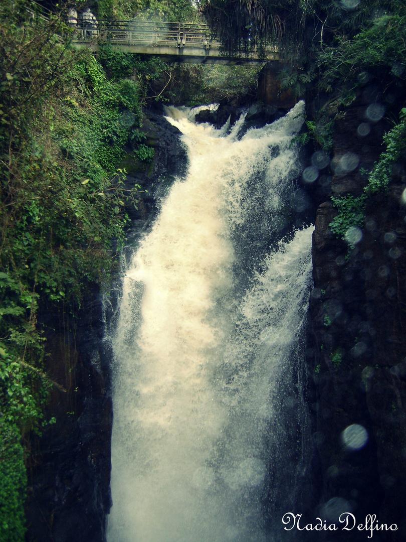 Puente y Cascada de Las Cataratas