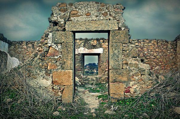 Naturaleza muerta im genes y fotos for Puerta 7 campo de mayo