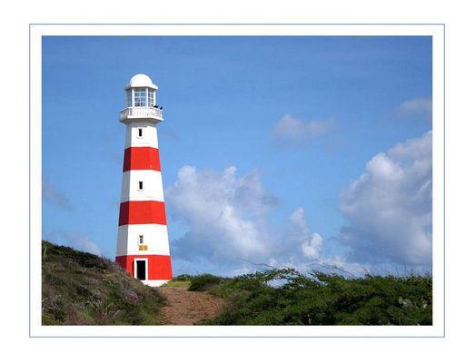 Puerto Cruz / Isla Margarita
