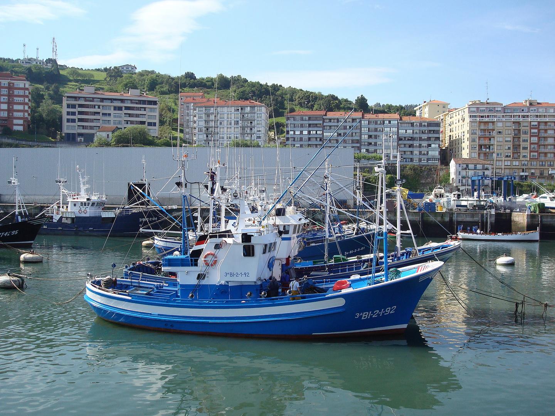 Puerto de Bermeo II