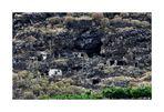 Puerto de Tazarcote - Höhlenbewohner
