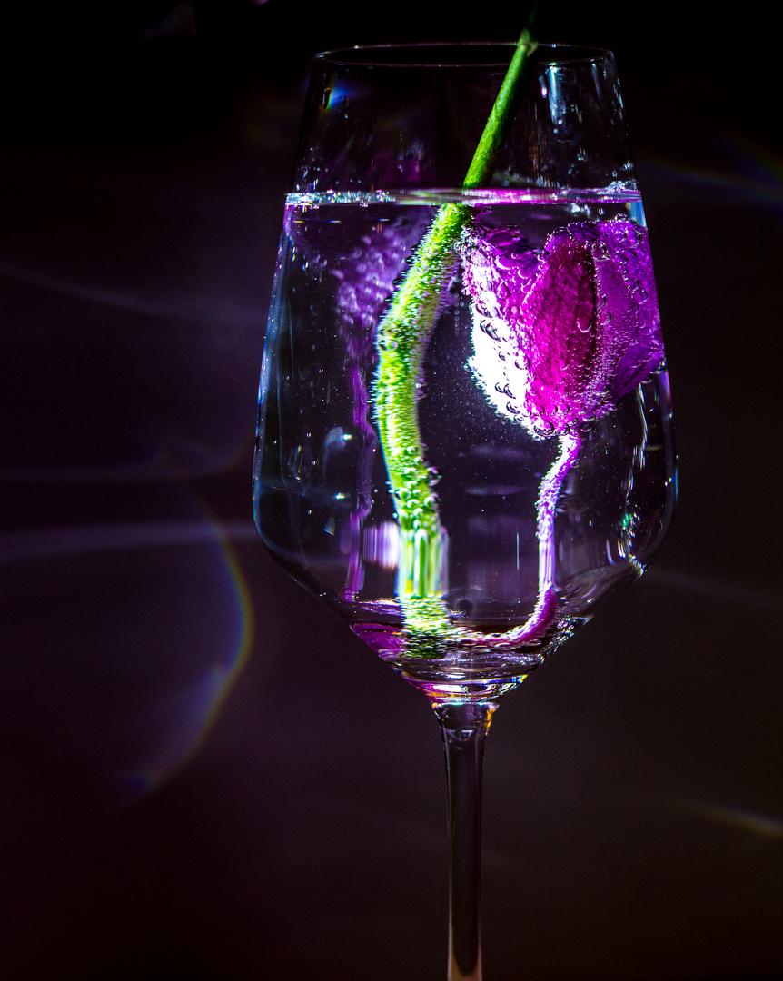 Purple Taste