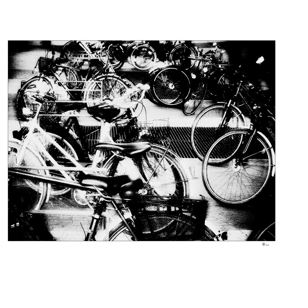 ~ pushbikes ~
