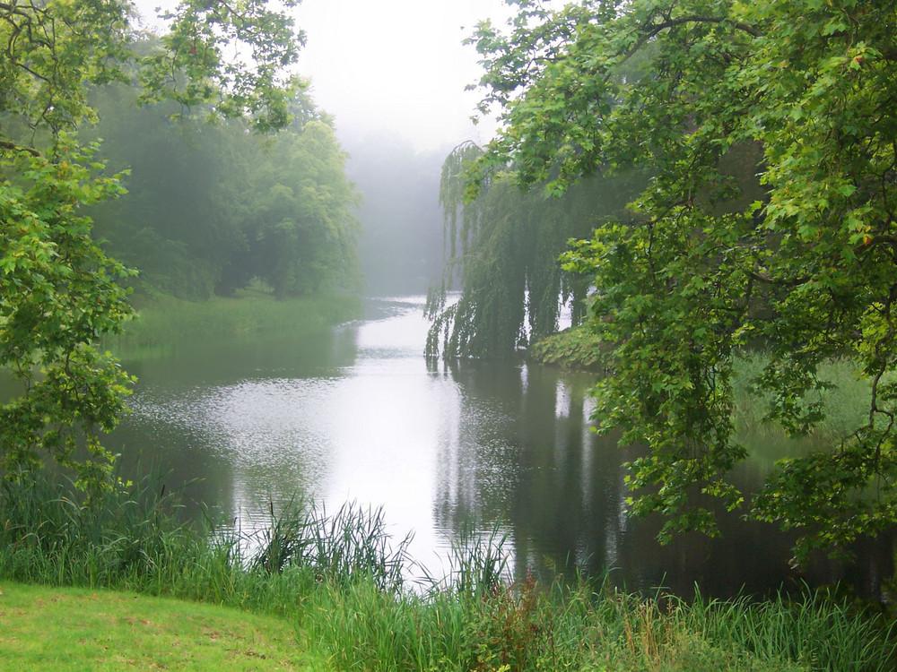 Putbuser Stadtgarten im Morgennebel