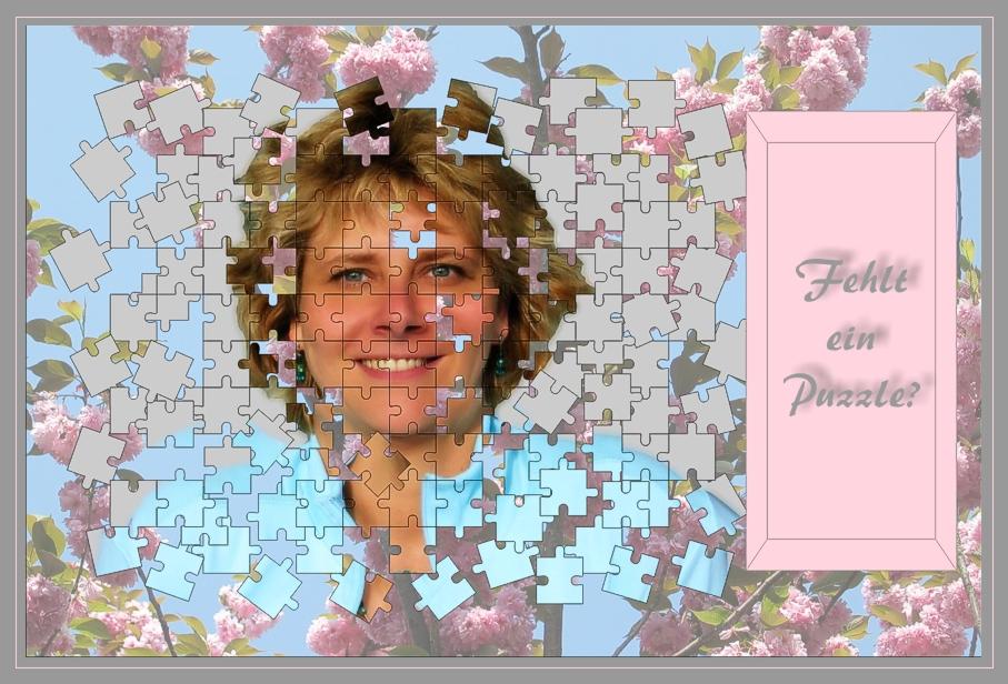 Puzzle - Sonderedition