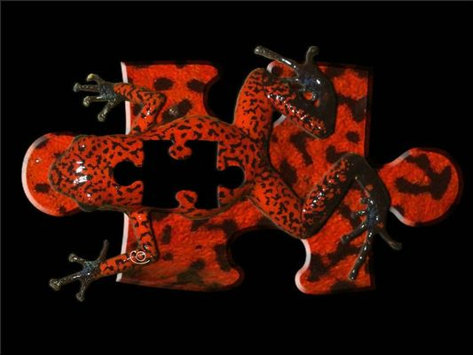 puzzledendro