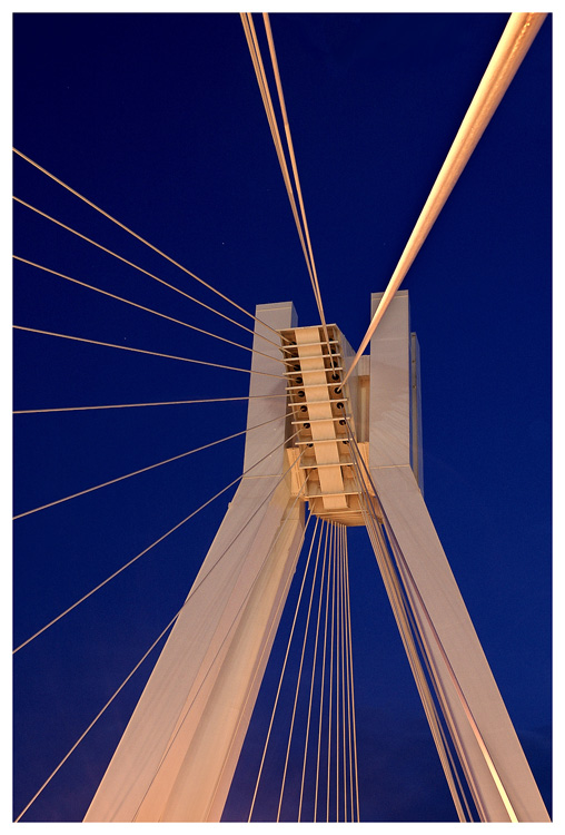 Pylon-Brücke Ludwigshafen