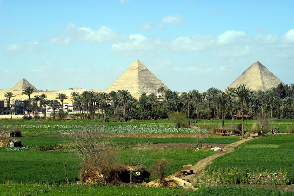 Pyramiden von Giza