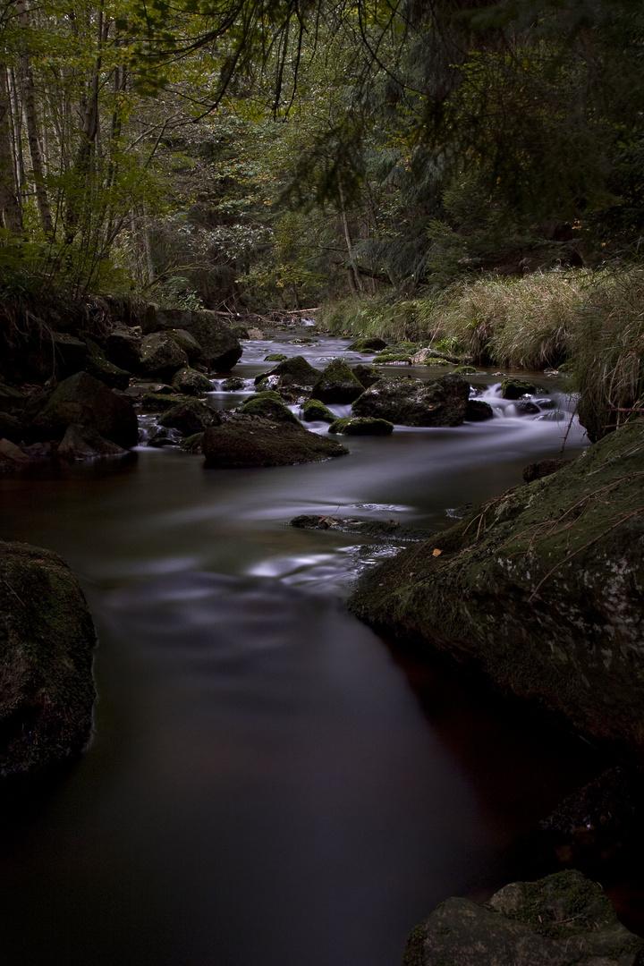 pyratal im märchenwald ;-)