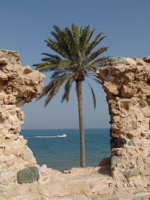 Qeshm Island-Persian Golf