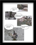 Quacks der Bruchpilot