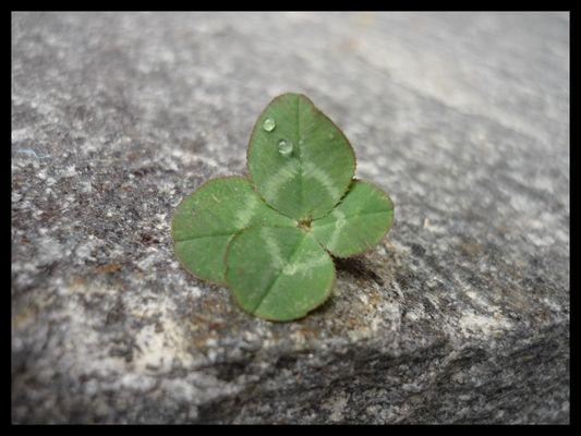 Quand la chance est avec moi !