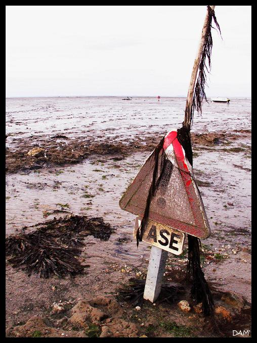 Quand la marée est basse au passage du Gois - Ile de Noirmoutier