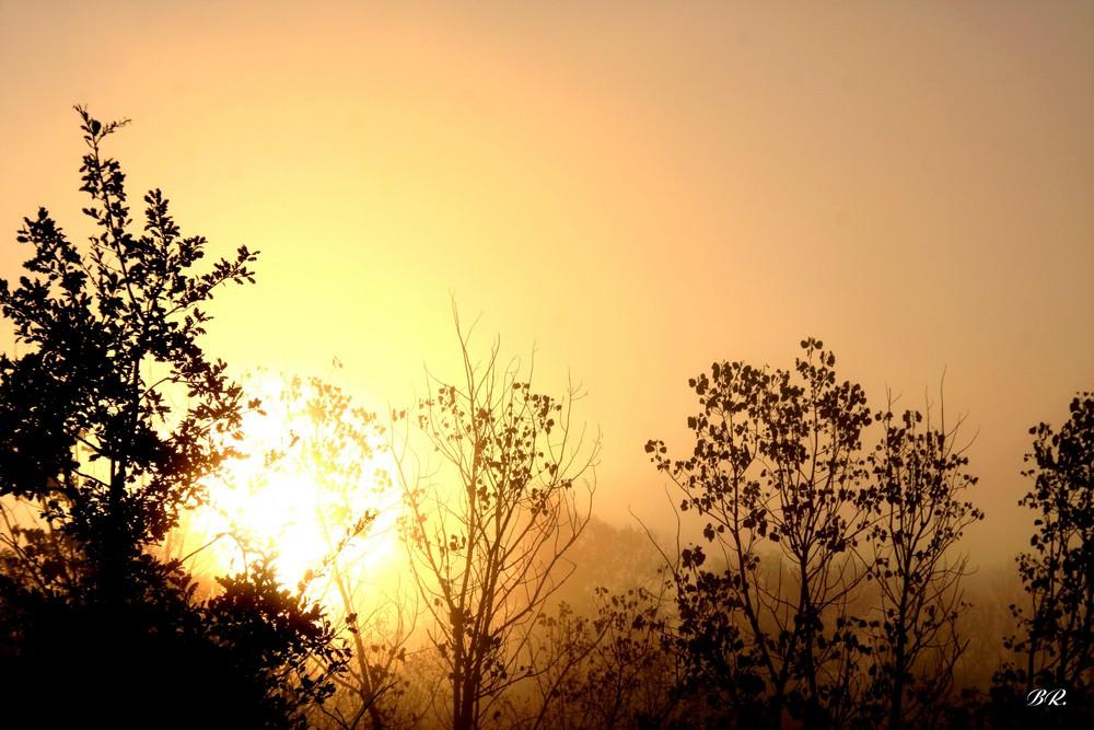 quand le soleil et le brouillard se mélangent