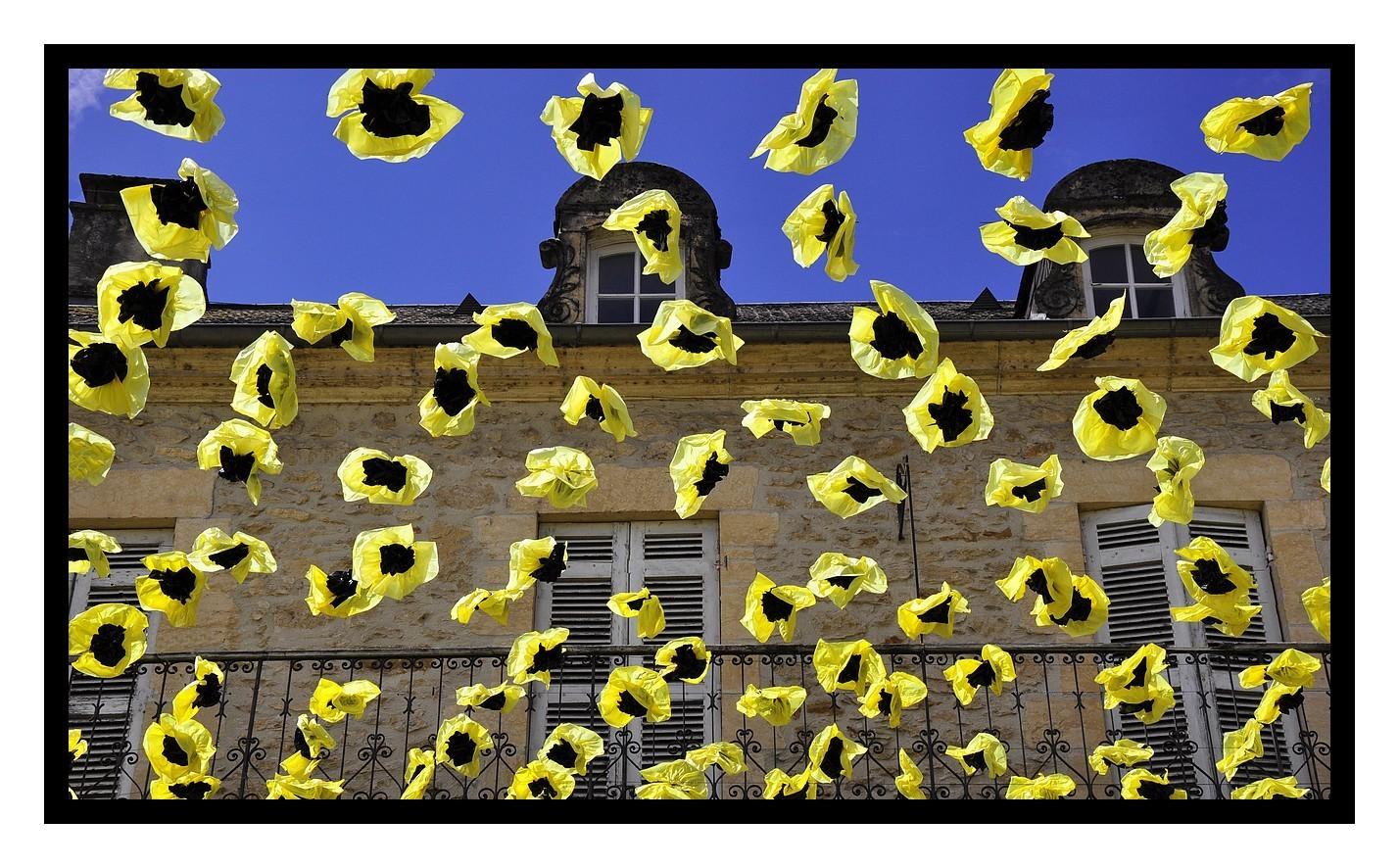Quand les jaunes arrivent