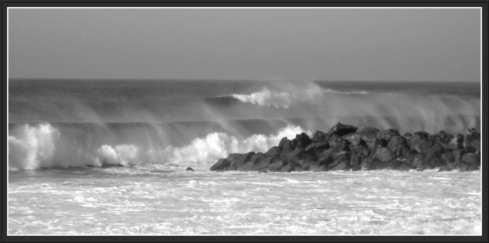 Quand les vagues ont des moustaches...