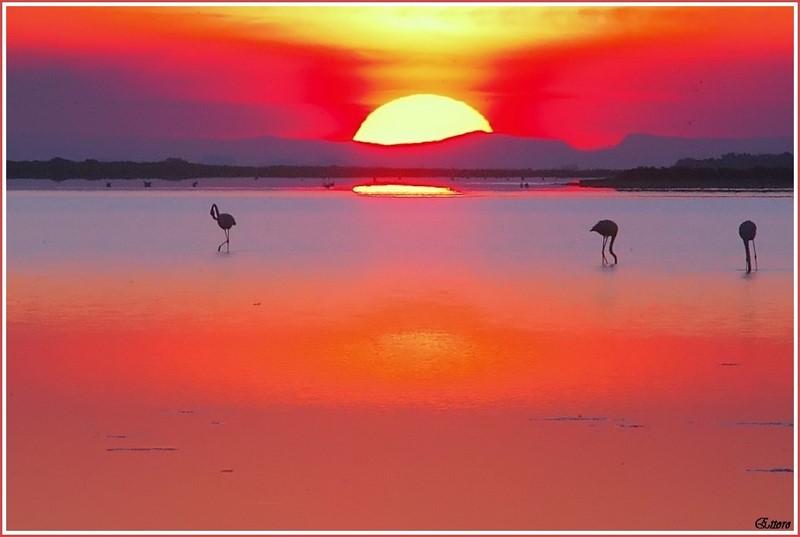 Quando il sole sorge