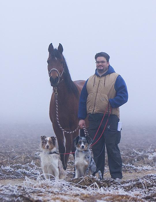Quartett im Nebel