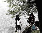 quattro sul lago
