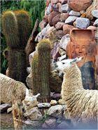 Quebrada de Humahuaca 13..............