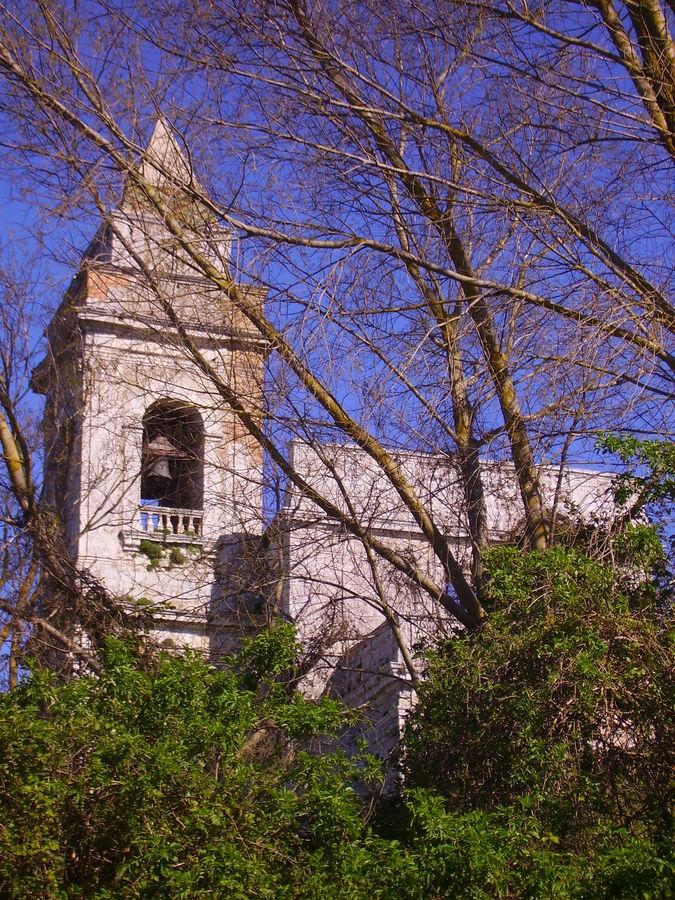 Quel campanile nel bosco