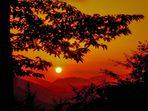 """""""Quel"""" tramonto che rivivrei"""
